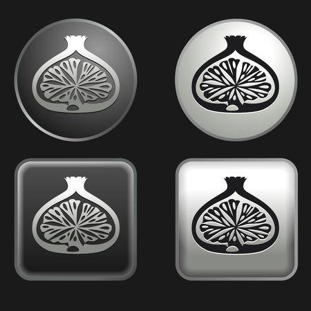 feuille de figuier: fig icône sur rondes et carrées boutons