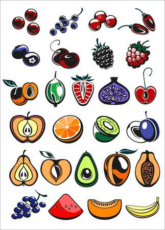 whortleberry: fruits and berry icons in color, vector illustration
