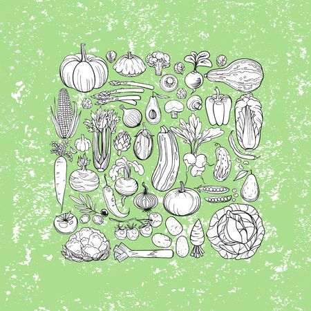 the sprouting: background made of different hand drawn vegetables Illustration