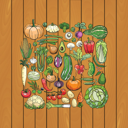 bean sprouts: hand drawn vegetables on a wooden deck Illustration