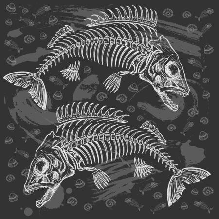 skeleton fish: fish skeleton sketch, illustration Illustration