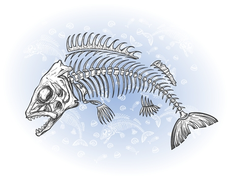 dead fish: hand drawn fish skeleton sketch Illustration