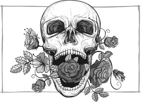 Skull with rose flowers illustration.