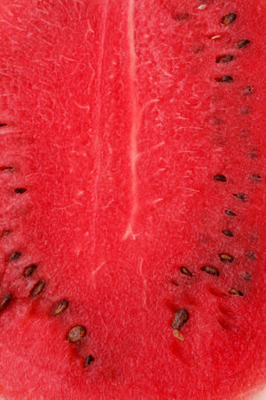 mellowness: the fresh juicy ripe watermelon as background