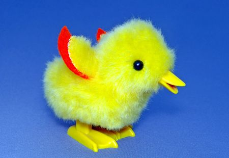 feathery: The Chicken.Soft  toy Chicken. Very bright and feathery.