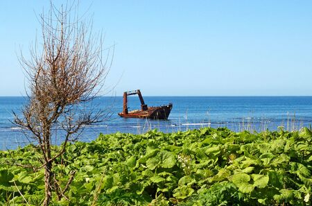remains: The Seascape, ship, which has long ago sunk beside coast. The Island Sakhalin, the Pacific ocean.