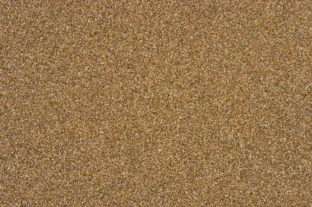 Sea sand. The Texture and background.