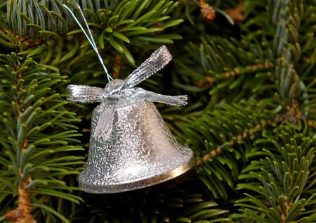 silvery: Small silvery bell on Fir tree. The Christmas. Stock Photo