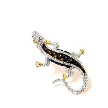 The Brooch Lizard. Stock Photo - 3759462