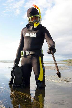 scuba diver: Diver