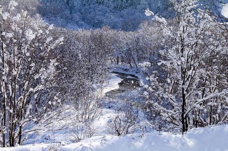 sakhalin: freezed small river in winter wood (island Sakhalin)