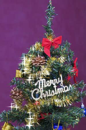 Christmas beautiful fir tree photo