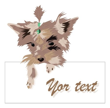 cute, funny dog 2018. modern colored frame with inscription design