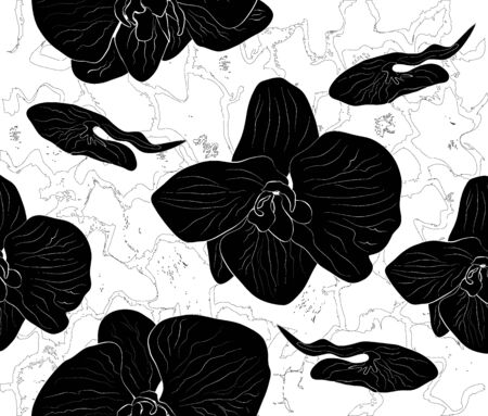 hand drawn set with Orchid flowers. monochrome, black-Bey seamless pattern. leaves and flowers isolated on white background with curved, wavy lines, modern illustration for advertising, Wallpaper, decoration, design, wrapping paper.