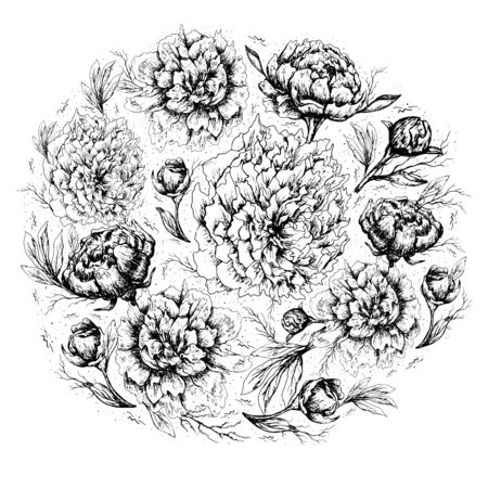 circle  of Botanical decorative elements. Peony flowers, leaves, stems, and buds are hand-drawn in a realistic drawing style. romantic black and white line elements. isolated objects on a white background. Vintage style.