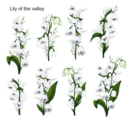 Spring set, a bouquet of Lily of the valley flowers. hand-drawn realistic Doodle isolated on white background. Botanical vector illustration, primrose flowers. for design, advertising, Wallpaper, paper  イラスト・ベクター素材