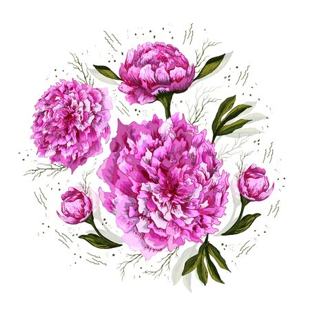 set of Botanical decorative elements. Peony flowers, leaves, stems and buds are hand-drawn in a realistic drawing style. romantic pink line elements. isolated objects on a white background. Vintage style.