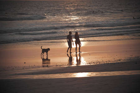 Couple walking with dog in front of ocean while sun is setting.