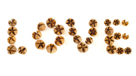 A group of small wooden shells spell the word love on a white background.