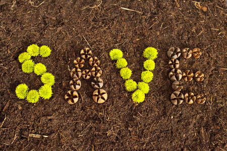 Environmental Save written in flowers and shells on soil. photo