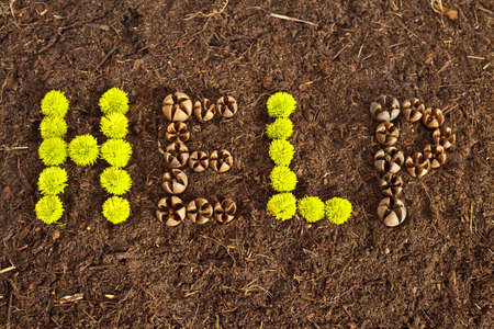 Environmental Help written in flowers and shells on soil. Stock Photo