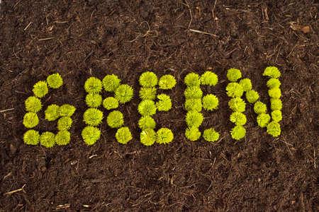Environmental Green written in flowers on soil. Stock Photo