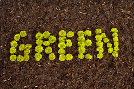 Environmental Green written in flowers on soil. Stock Photo