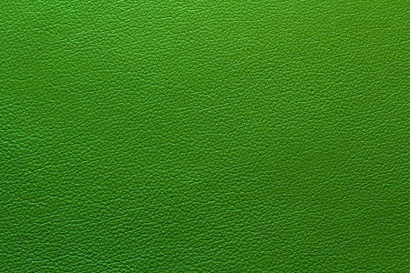Green leather with texturestructure photo