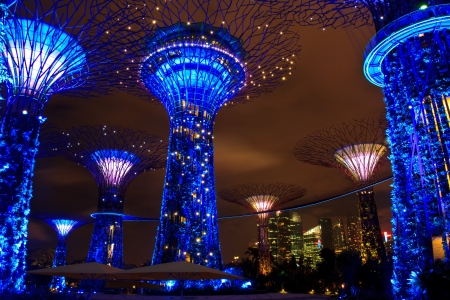 garden by the bay , the most beautiful garden in singapore