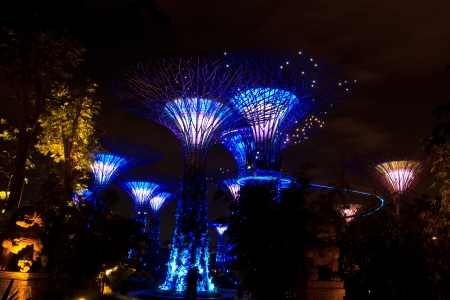 garden by the bay the most beautiful garden in singapore