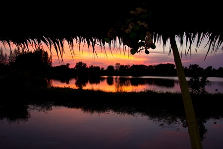 trees silhouette on sunset Thailand river photo