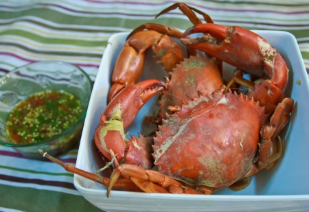 Photo of steamed crabs that were caught in the Trat, Thailand  These are called black crabs and are the most popular seafood in Trat  They are usually served with spicy sauce  photo