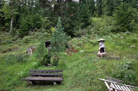 glades: Bench in the Wood