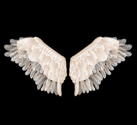 Vector wings with feathers isolated on black background. Vetores