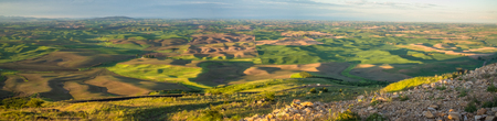 Panorama: The Palouse from Steptoe Butte at sunrise, with rocks 写真素材