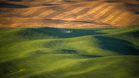 Crop Duster dropping pesticide on a wheat field in The Palouse at sunrise 写真素材