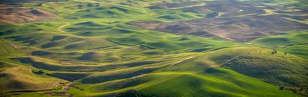 Panorama: farming in the Palouse