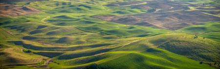 Panorama: farming in the Palouse 写真素材 - 102987135