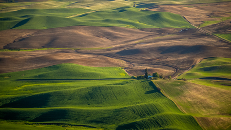 Farming in the Palouse 写真素材