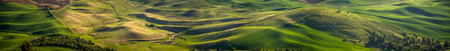 Panorama: rolling hills of the Palouse 写真素材 - 103062494