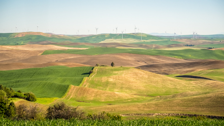 Wind power on The Palouse