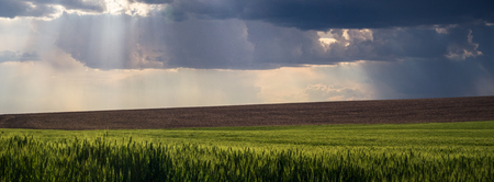 Panorama: god rays over The Palouse