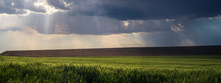 god rays over The Palouse 写真素材 - 103036619
