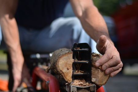 splitting up: Close-up of man hand using log splitter to cut tree logs into firewood