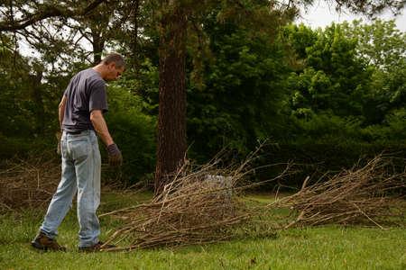 bundling: Man making bundle of cut twigs in yardwork, side view