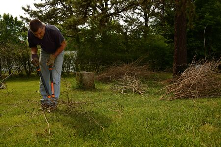 front view: Man cutting bundle of twig branches in yardwork, front view Stock Photo