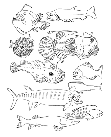 disgusting: deep-sea fish. hand drawn Illustration