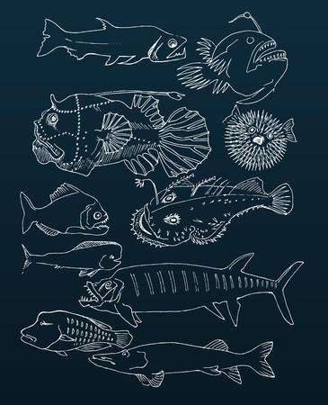 deepsea: deep-sea fish. hand drawn Illustration