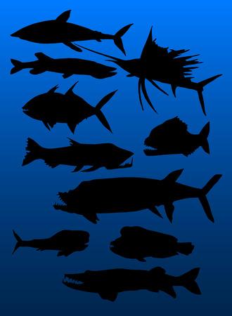 predatory: set of predatory fish