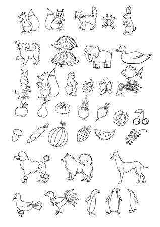 bear berry: set hand drawn animals. Set of object